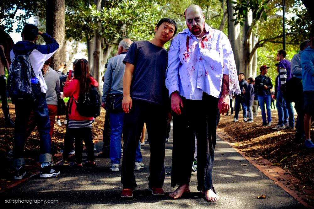 ZombieShuffle2014-11